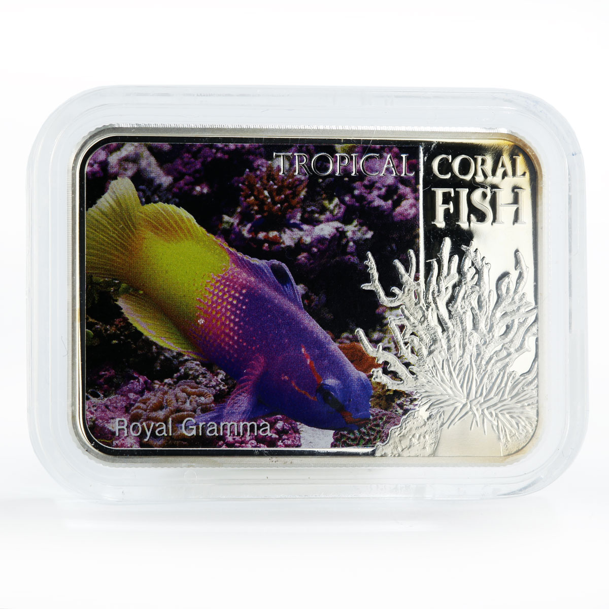 8000 Aquarium Niue 1 dollar 2013 Fish Royal Gramma Silver mint