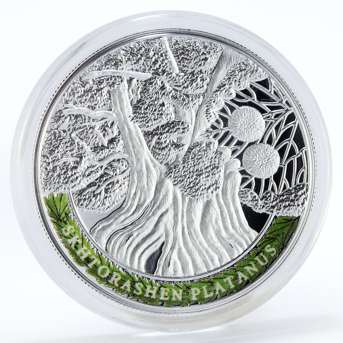 Armenia set of 4 coins 100 drams Oldest Trees Of The World proof silver 2014
