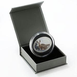 Niue 1 dollar Year of the Rabbit colored proof silver coin 2011
