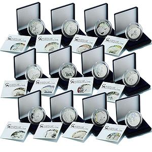 Cameroon set of 12 coins Zodiac series hologram silver 2010