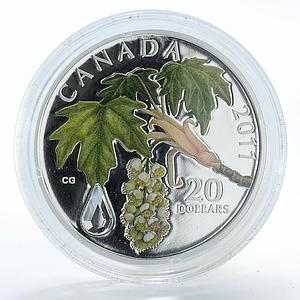Canada 20 dollars Crystal Raindrop proof silver coin 2011