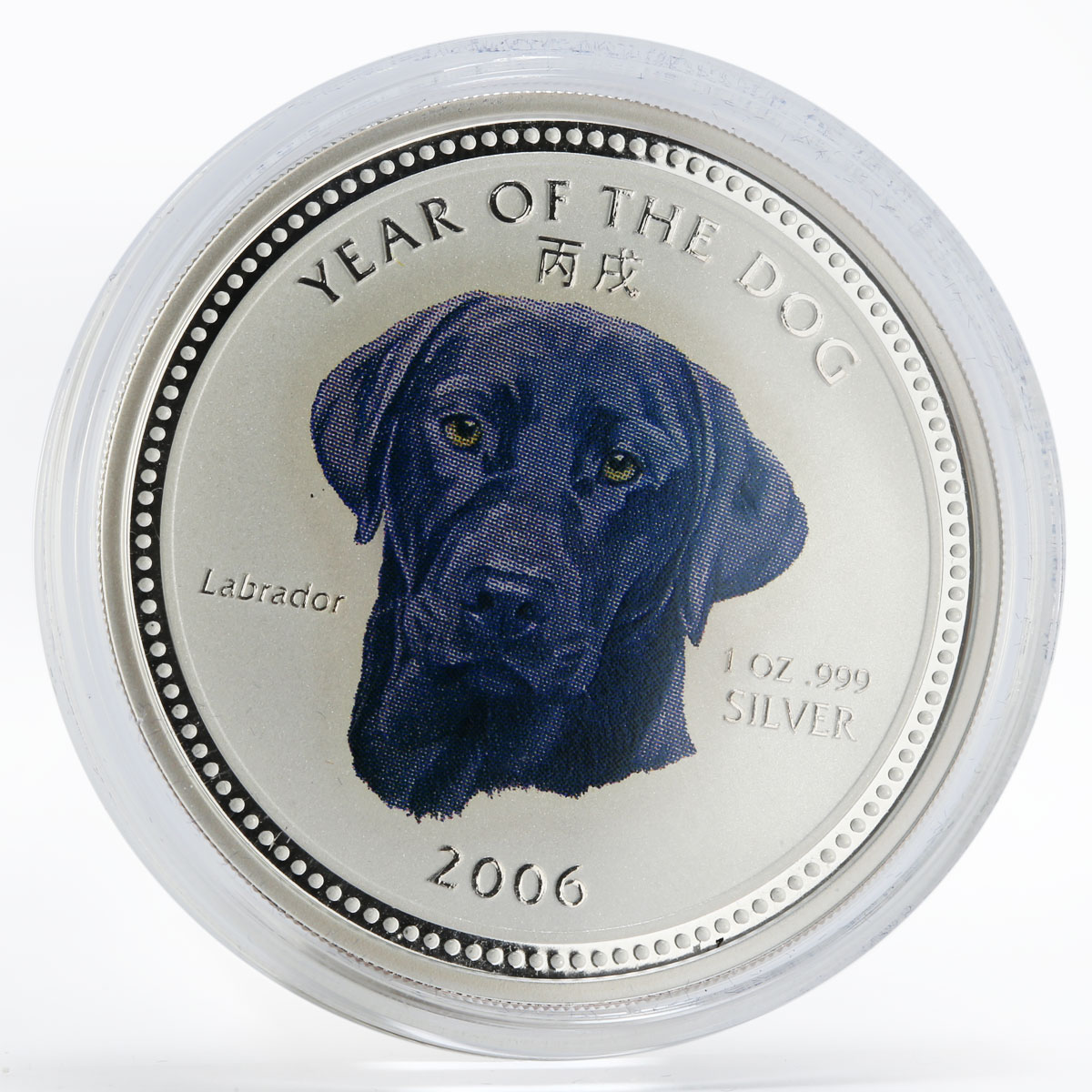 Cambodia 3000 riels Labrador Year of the Dog silver color coin 2006