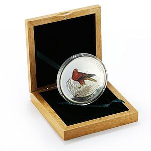 Mongolia 5000 togrog Aquila Rapax Steppe Eagle colored proof silver coin 2007