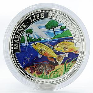 Liberia 20 dollars Marine Life Cichlids fishes colored proof silver coin 1999
