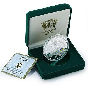 Ukraine 20 hryven 25 years of Independence proof silver coin 2016