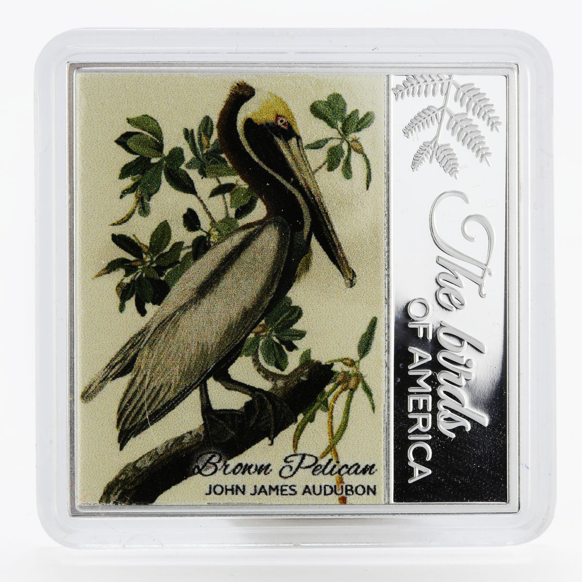 Cameroon 500 francs Birds Of America Brown Pelican color proof silver coin 2017