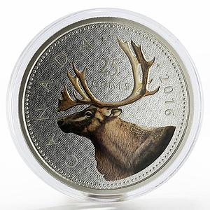 Canada 25 cents Big Coin series The Caribou Deer colored silver coin 2016