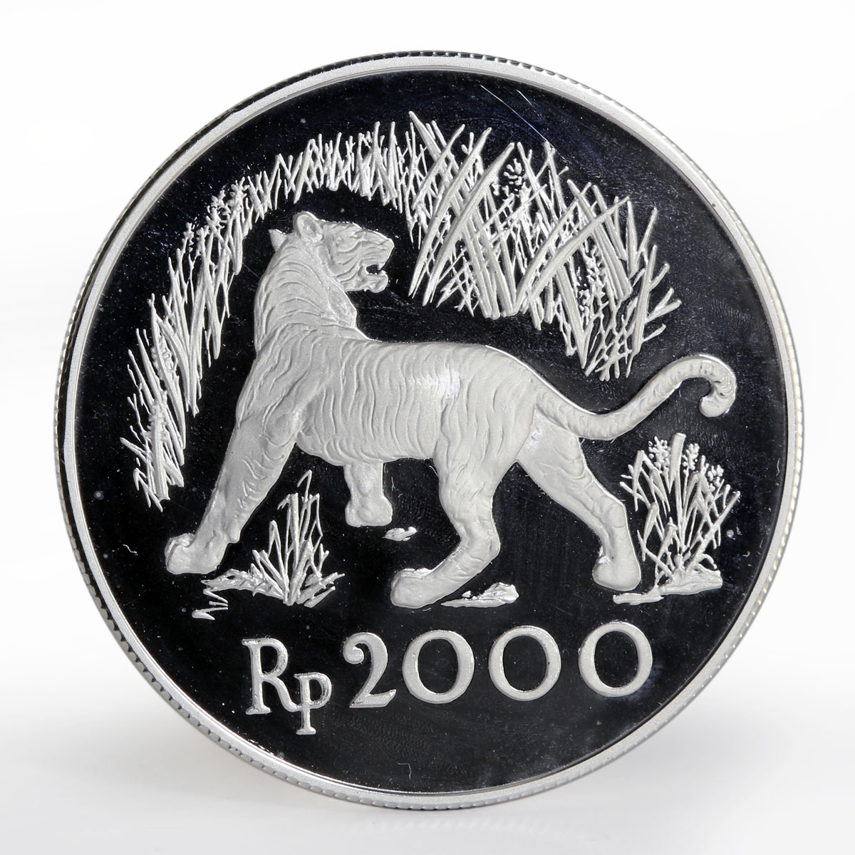 Indonesia 2000 Rupiah Javan Tiger proof silver coin 1974