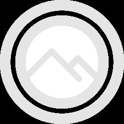 clover coin japan